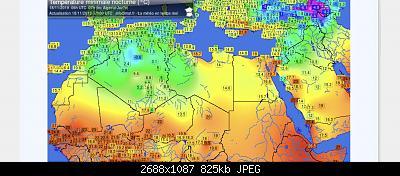 Reports from Algiers-algeriamin.jpeg
