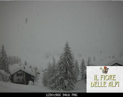 Alto Piemonte ( VC - NO -BI - VCO ) Autunno 2019-schermata-2019-11-23-alle-14.04.55.jpg