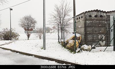 Nowcasting Emilia - Basso Veneto - Bassa Lombardia, 01 Dicembre - 16 Dicembre-img_20191212_143536.jpg