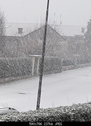 Basso Piemonte - Dicembre 2019-20191213_083547.jpg