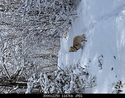 Nowcasting Torino e Provincia Dicembre 2019-d930fff6-e722-401b-914a-546109dbb3fd.jpg