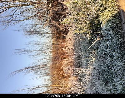 Toscana 9-15 dicembre-20191214_081740.jpg