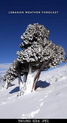 Catena del Libano - Situazione neve attraverso le stagioni-79901368_2910977918915146_4511401529952960512_o.jpg