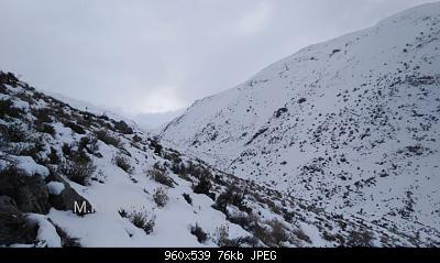 Catena del Libano - Situazione neve attraverso le stagioni-81534844_2943321535680784_927369974207479808_o.jpg