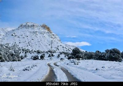 Catena del Libano - Situazione neve attraverso le stagioni-80694408_2911692825509567_4845723300397056000_o.jpg