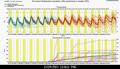 Romagna dal 06 al 12 gennaio 2020-screenshot_2020-01-12-previsioni-multimodel-ensemble-per-gabicce-mare.png
