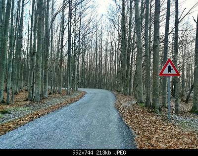 Romagna dal 06 al 12 gennaio 2020-img_20200112_152453-01.jpg