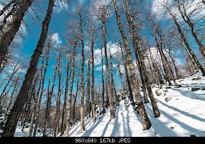 Catena del Libano - Situazione neve attraverso le stagioni-82634831_3000725956607008_4480319873834024960_o.jpg