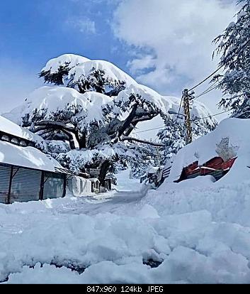 Catena del Libano - Situazione neve attraverso le stagioni-83398952_2967505496594966_8066644826151452672_o.jpg