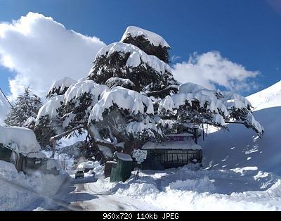 Catena del Libano - Situazione neve attraverso le stagioni-83356247_2275574802542743_184538612811956224_o.jpg
