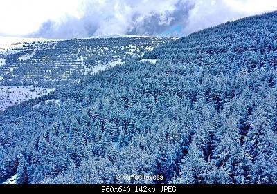 Catena del Libano - Situazione neve attraverso le stagioni-82848479_855217118251002_479291940479696896_n.jpg