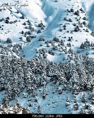 Catena del Libano - Situazione neve attraverso le stagioni-83251707_2982976301714552_4307435792218718208_o.jpg