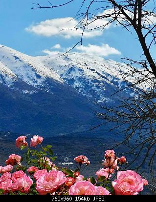 Catena del Libano - Situazione neve attraverso le stagioni-84620098_2987174344628081_1909258493743857664_o.jpg