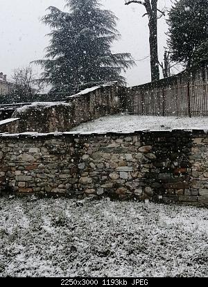 Basso Piemonte - Marzo 2020-img_20200302_105403.jpg