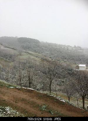 Calabria - Inverno 19/20-img-20200325-wa0001.jpg