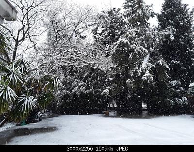Seguiamo qui la fase di forte freddo da Domenica 22 marzo-20200325_103106.jpg