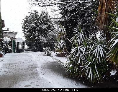 Seguiamo qui la fase di forte freddo da Domenica 22 marzo-20200325_103117.jpg