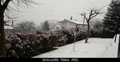 Campania - Marzo 2020...-20200325_150158.jpg