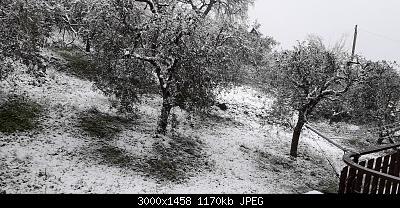 Campania - Marzo 2020...-20200325_152648.jpg