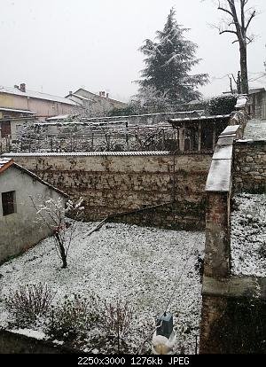 Basso Piemonte - Marzo 2020-img_20200326_165423.jpg