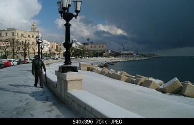 Foto neve Aprile 2003 coste molisane e pugliesi-b1ce2da6-9d66-439d-8df7-c21f951223dc.jpeg