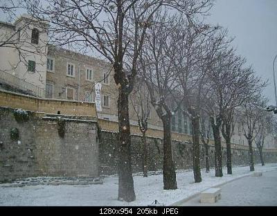 Foto neve Aprile 2003 coste molisane e pugliesi-85802eac-eb5d-47f9-afde-878856bb44ee.jpeg