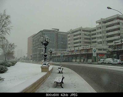 Foto neve Aprile 2003 coste molisane e pugliesi-ac4451b6-1fa5-44ac-92df-d5b0a15097b2.jpeg