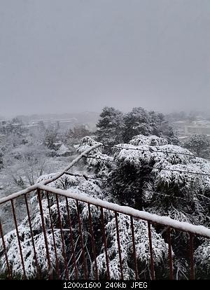 Puglia, sera 31 Marzo - 3 Aprile: ultimo richiamo dell'inverno-img-20200401-wa0006.jpg