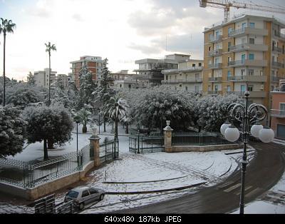 Foto neve Aprile 2003 coste molisane e pugliesi-neve1.jpg