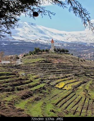 Catena del Libano - Situazione neve attraverso le stagioni-91189730_898862383886475_8305139901922279424_n.jpg