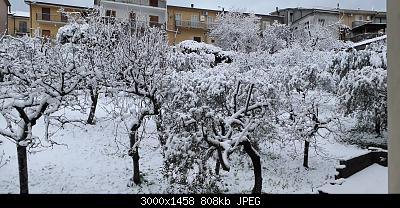 Campania - Marzo 2020...-20200401_063837.jpg