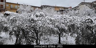 Campania - Marzo 2020...-20200401_064151.jpg