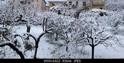 Campania - Marzo 2020...-20200401_064303.jpg