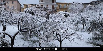 Campania - Marzo 2020...-20200401_064329.jpg