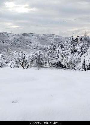 Campania - Marzo 2020...-91421779_2611339689191368_2712990760524840960_n.jpg