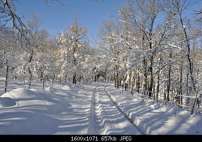 Seguiamo qui la fase di forte freddo da Domenica 22 marzo-2.jpg