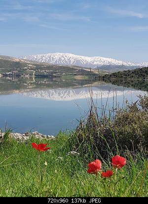 Catena del Libano - Situazione neve attraverso le stagioni-91706793_3164461466900122_8523033771920850944_o.jpg
