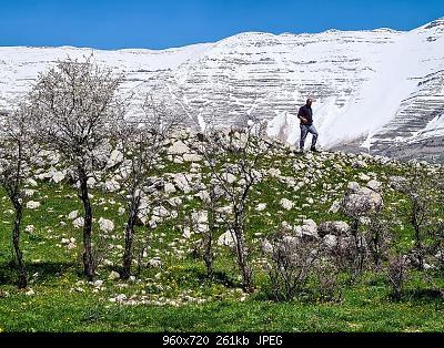 Catena del Libano - Situazione neve attraverso le stagioni-92823533_10163293481505072_7983276448624410624_o.jpg