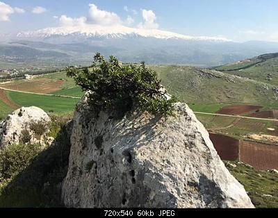 Catena del Libano - Situazione neve attraverso le stagioni-93244103_694940614607873_2701575171243769856_n.jpg