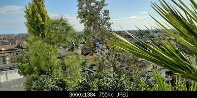 Nowcasting Vegetazione 2020-20200429_083808.jpg