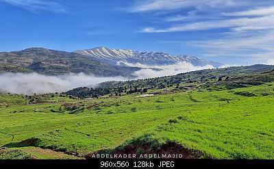 Catena del Libano - Situazione neve attraverso le stagioni-96167170_2926809114107900_165841542135676928_o.jpg
