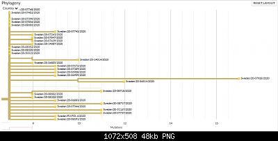 Nuovo Virus Cinese-screenshot_2020-05-29-nextstrain-ncov-global-1-.png