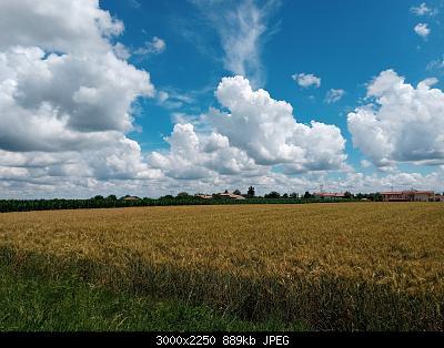 Acqua, irrigazione e sistemi irrigui-20200609_143748.jpg