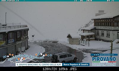 Valtellina, Valchiavenna, Orobie e Lario: ESTATE 2020-stelviolive_11.jpg