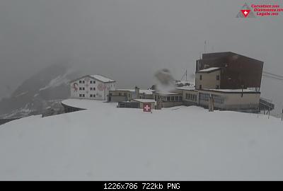 Nowcasting nivoglaciale Alpi estate 2020-immagine.png