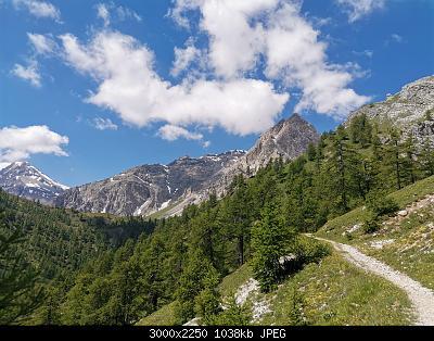 Torino e provincia Giugno 2020-img_20200623_112328.jpg