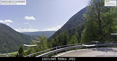 Vallate alpine senza faggi-faggio-betulla-in-pusteria.jpg