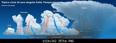 Previsioni nautiche-tipico_ciclo_di_una_singola_cella_temporalesca.png
