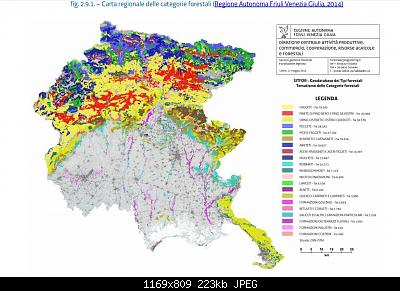 Vallate alpine senza faggi-forst.jpg