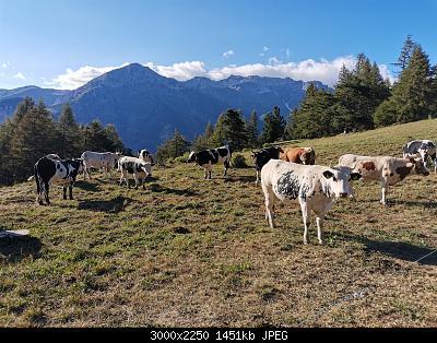 Nowcasting Torino e Provincia Agosto 2020-img_20200804_183811.jpg